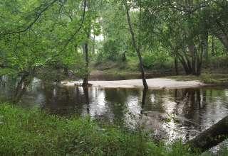 Canoochee River Rentals