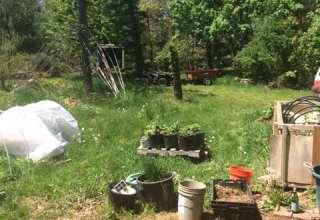 Joe's Small Home/Farm Brewster