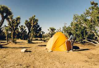 Camp Manzanita (Group Campers)