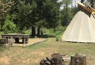 Willow Camp