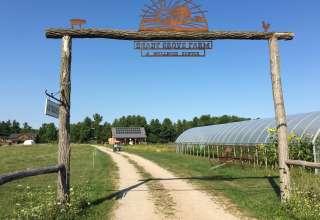 Shady Grove Farm and Wellness Center