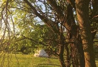 Breath Sweet Camp