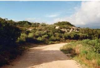 Jonas D.'s Land