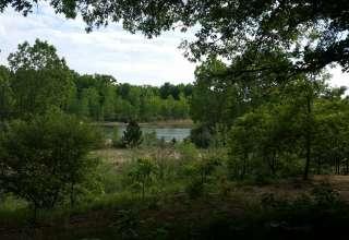 Karner Blue Campground