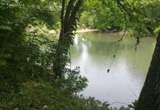 Banjo Picker's River Bluff