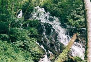 Indigo Eagle Sanctuary