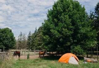 The Barton Family Farm & Ranch