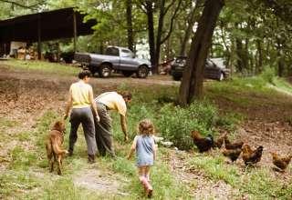 Mama Mountain Farm