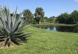 Rural Palm Beach Hipcamp