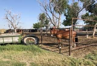 Sleepy Y Ranch