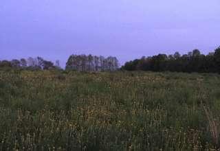 Barbara D.'s Land  aka BHF Farm