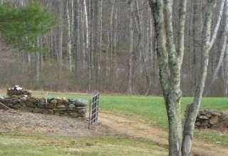 Bush Meadow Farm