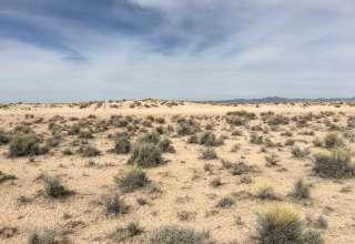 Nicole C.'s Land