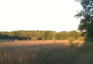 Matthew M.'s Land