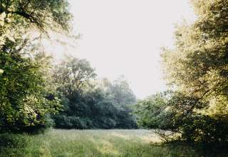 Bear Creek Farm and Ranch