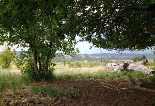 Eagle Springs Farm