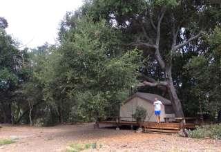 Oak Haven@Branch Mill Organics
