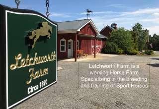 Letchworth Farm