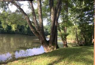 Bethany C.'s Land