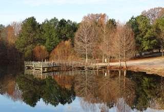 Lake Nowhere Farm