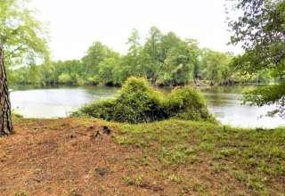 Sara P.'s Land