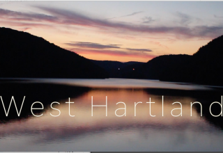 West Hartland Woods