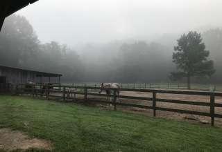 Stewart Legacy Farms