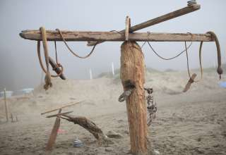 Willow Camp - Stinson Beach