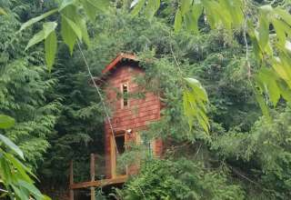 Treehouse Place at Deer Ridge!