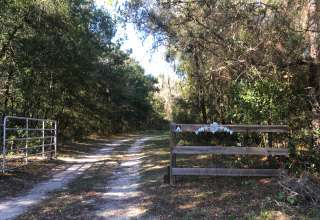 Country Lane Camp