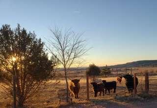Cheyenne Mountain Farm