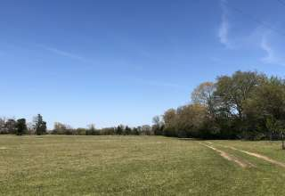 Hollydew Farm