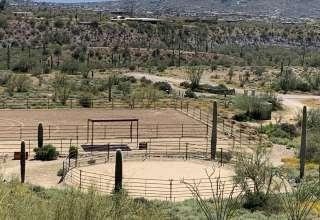 Saguaro Green