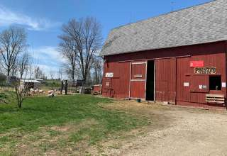 Painted Acres Farm and Rescue