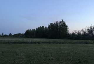 Titus Farms