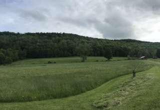Cedella B.'s Land