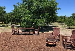 Farm Stay! Ballard Walnut Grove
