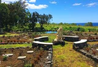 New Earth Hawai'i