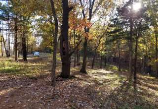 Mitchem Camp Site