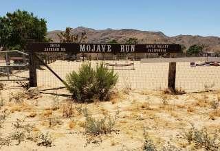 Mojave Run
