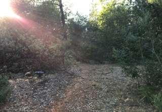 Peace & Quiet near Redding