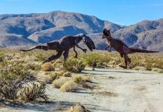 Anza Wild Ranch