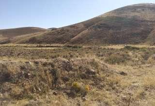 Long Life Ranch
