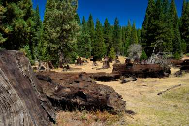 Wishon Campground