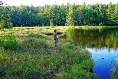 Luna - White Deer Lake Campground