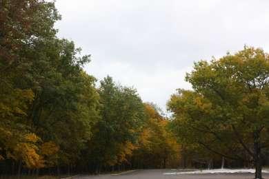 Maple Grove Campground