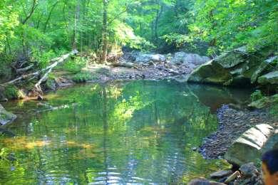 Turkey Ridge Campground