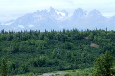 Denali View North