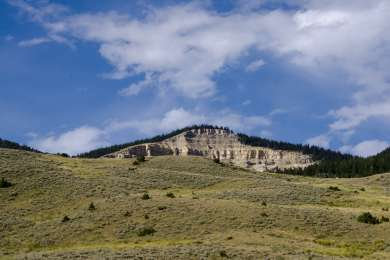 Bighorn National Forest
