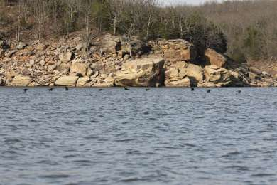 Osage Point Campground